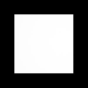 Immersive Icon White